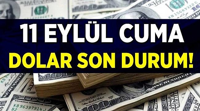 11 Eylül Dolar Fiyatı Ne Kadar? Dolar Yakında Yükselir mi?